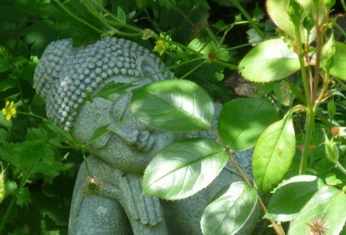 Seele und Selbst –  mit Nandi Devar